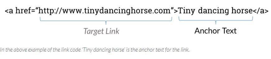 anchor-text-reach360